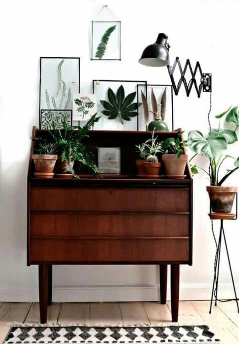 interior goals   plant love   stylish interior   lovely home   decoraiton idea   green vibes   Fitz & Huxley   www.fitzandhuxley…