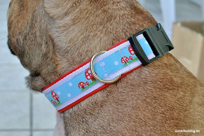 Anleitung: Hundehalsband selbst nähen