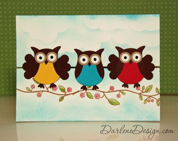 Special Fold Owls
