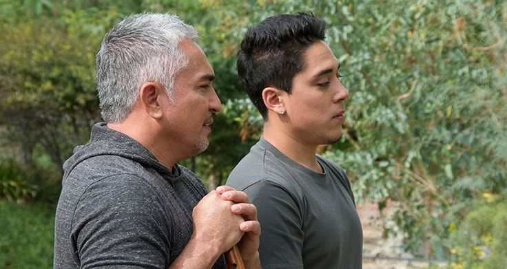 """Cesar Millan and Andre Millan Hope you're doing well..From your friends at phoenix dog in home dog training""""k9katelynn"""" see more about Scottsdale dog training at k9katelynn.com! Pinterest with over 22,300 followers! Google plus with over 565,000 views! You tube with over 600 videos and 60,000 views!! LinkedIn over 13,200 associates! Proudly Serving the valley for 12 plus years! now on instant gram! K9katelynn"""