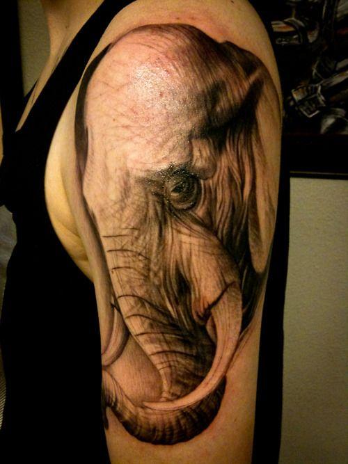 Aiz Tattoo Gallery Elephant On Hand