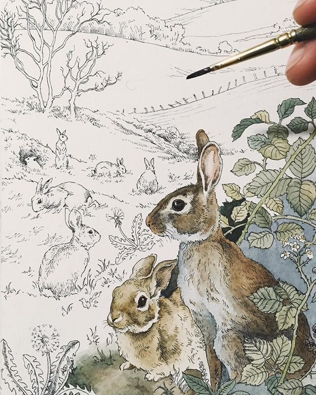 """Many human beings say that they enjoy the winter, but what they really enjoy is feeling proof against it."" - Richard Adams // I was so happy to receive a commission request for a Watership Down-themed work, especially with the recent passing of the author. Definitely one of my all time favourite reads growing up"