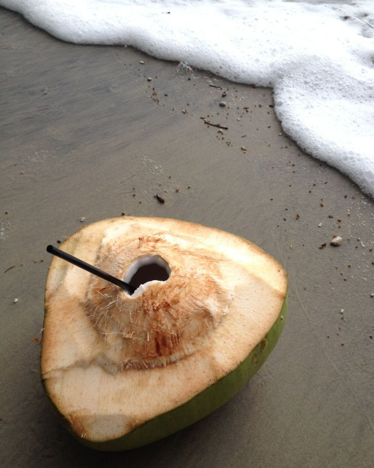 Fresh Coconut on the beach - Great Barrier Reef