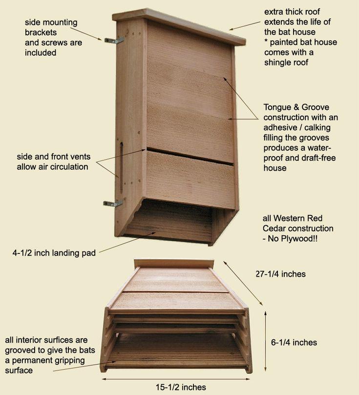 Bat conservation international bat house plans 28 images for International house plans