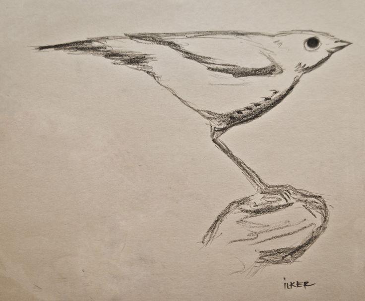 kuş   |   Kurşun kalem 8B - Uçlu kalem 0,5mm 2B