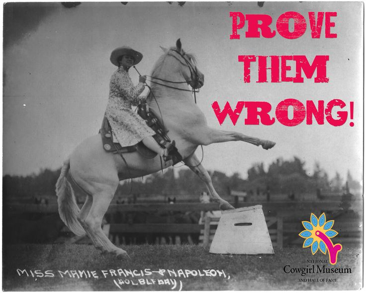 Foyer Museum Quotes : Best sayings i like images on pinterest equestrian