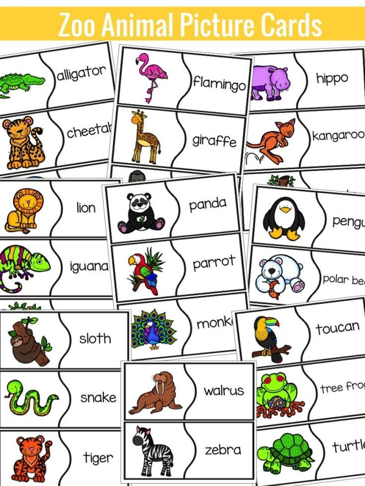 zoo animals list에 대한 이미지 검색결과 Zoo animal activities, Zoo