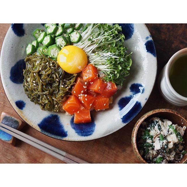 fujifab12 on Instagram pinned by myThings 卵黄漬けサーモンの体に良い丼!!!!!ネーミングから漂う駄作感  サーモン、卵黄、醤油、味付きめかぶ、ブロッコリースプラウト、おくら!!!!!! 栄養価考えすぎて見た目気に食わんやーつ。いや、味はいいんですよ。でも見た目が。うーーーん  副菜はほうれん草の豆乳おから和え。 なんで豆乳入れちゃったんだよ白和えで良かったじゃねぇかよってなったやーつ。いや、こちらも味はいいんですよ。でもコンセプトが。うーーーーーーーーん  くそー。ふるわん。