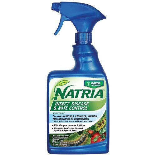 Bayer Advanced 706120A NATRIA Insect, Disease and Mite Control Ready-to-Use, 24-Ounces by Bayer Advanced. $6.47. For use on roses, flowers, houseplants, ornamental trees and shrubs, fruits, nuts and vegetables. This product controls a wide range of fungal diseases and pests. Contact killer for both insect and mite pests. Natria products are non-synthetic, innovative alternatives to convential solutions. Convenient and easy-to-use. Contact killer for both insect and mite p...