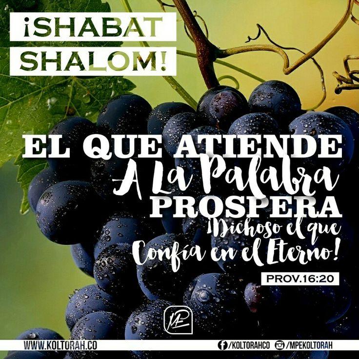 Hay un solo camino para hallar genuina benevolencia, placer y prosperidad que viene del Altísimo: «El que atiende a la Palabra, prospera. ¡Dichoso el que confía en el Eterno!» (Prov.16:20)    ¡Shabat Shalom!   ✡