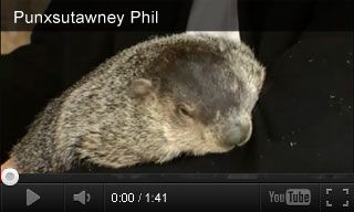 In this video, groundhog Punxsutawney Phil talks about his daily life, diet, and the handlers that care for him. Kids will learn about Phil's favorite foods and his busy schedule.