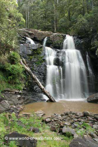 Stevenson Falls  Great Otway National Park, Victoria, Australia