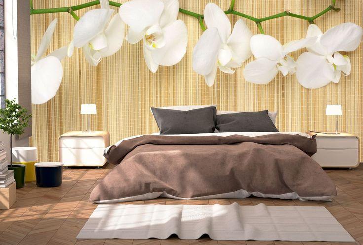 Piękna orchidea nad łóżkiem? Czemu nie!
