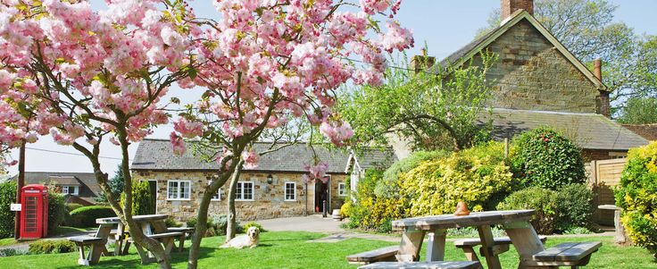 The Coach & Horses, Country Pub and Restaurant in the Heart of Sussex - lovely pub in a great location, nice food, and garden