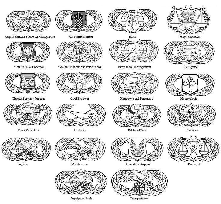 MI United States Air Force Specialty Badges.jpg (791×729