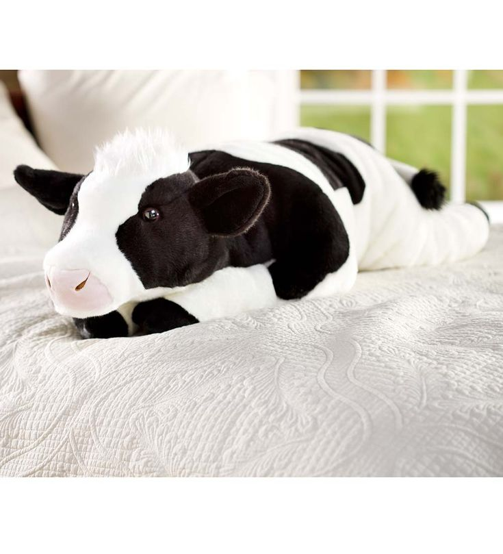 Cuddly Cow Body Pillow for those who love cows