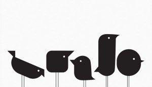 Flockfolie vintage vogels