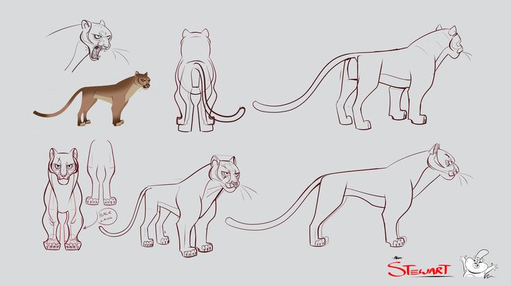 Drawing animals character design concept animal drawing design