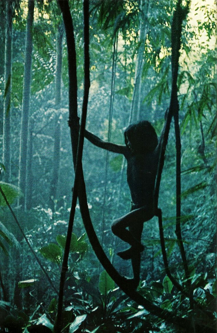 Indigenous Tasaday child scampers through the forest with ease on the Southern tip of the Philippines National Geographic | August 1972