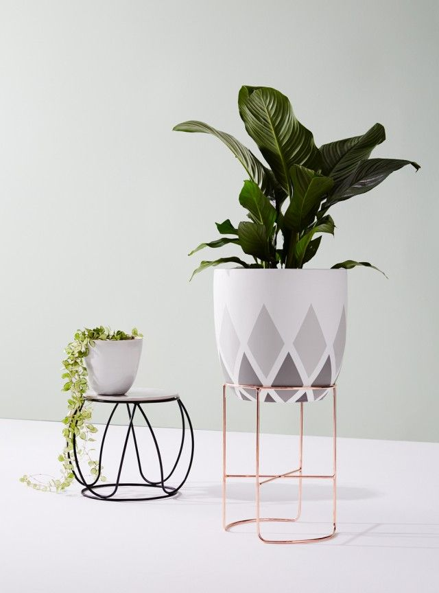 Ivy Muse evolve stylish third collection beyond plant stands - The Interiors Addict