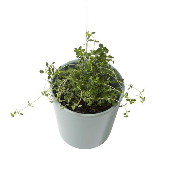 Hanging pot - hardtofind.