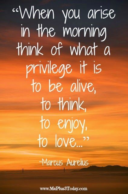"""When you arise in the morning think of what a privilege it is to be alive, to think, to enjoy, to love..."""". More powerful quotes worth reading right now! This quote will help you get through the day!"""