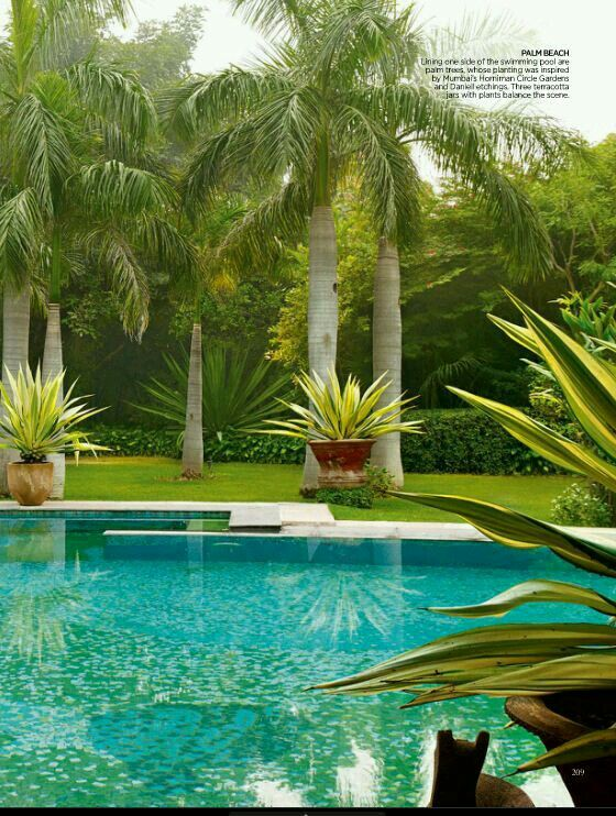 62 best images about inground pool steps on pinterest - Palm beach pool ...