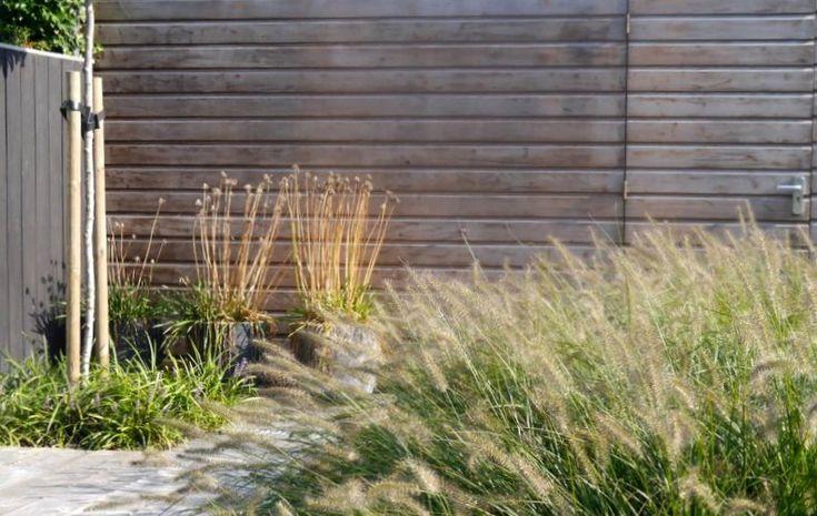 Afbeeldingsresultaat voor bamboe beton terras