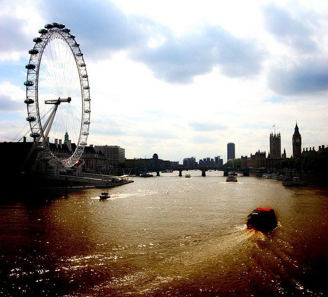 Three great beer festivals in Europe.: London Eye, Favorite Places, Tops, Book Shop, Cities, Travel, London England, Eyes