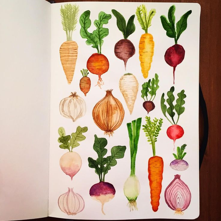 Root Vegetables • #cbdrawaday • Day 17 (This is an old one. Does it count?)…