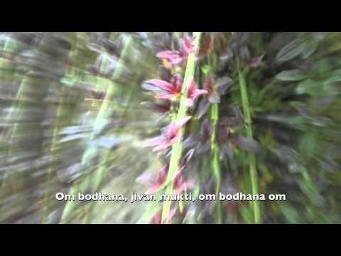 'Hang music with chant - Om Bodhana' - (multi-layered) by samjjana