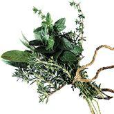 Kruiden bewaren. Handig om nu een voorraadje te maken voor de winter. http://www.smulweb.nl/artikelen/153271/Verse-kruiden-bewaren-drogen-en-invriezen