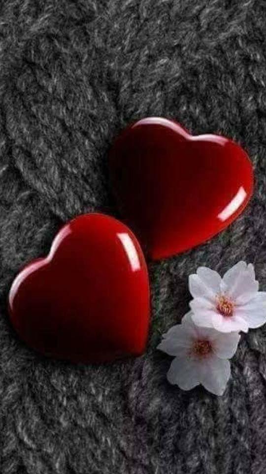 Life Can Be Beautiful Love Wallpaper Backgrounds Heart Wallpaper Flower Phone Wallpaper