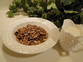 Wheat Belly Buster Healthy Coconut Almond Granola - Wheat and Gluten free!