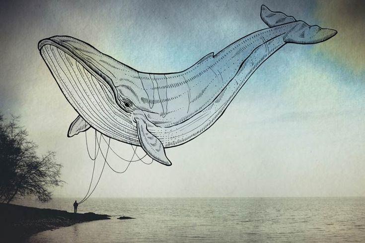 Oceanographies – Les créatures volantes de Giulia Pex (image)