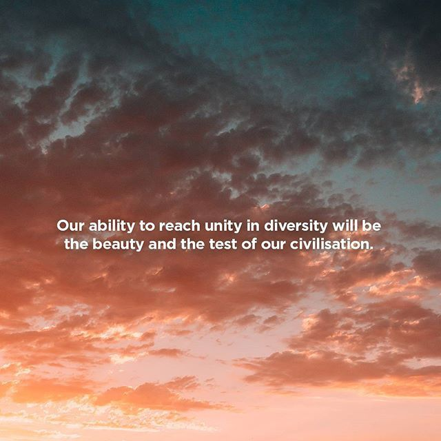 Our ability to reach unity in diversity will be the beauty and the test of our civilisation.