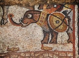 The elephant pictured in the Huqoq mosaic is part of a larger scene showing soldiers, other war animals and lit oil lamps, as well as an elder holding a scroll surrounded by young men with sheathed swords. Photo: Jim Haberman