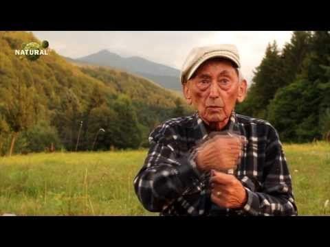 ▶ Ovidiu Bojor - Să învățăm să mâncăm - YouTube