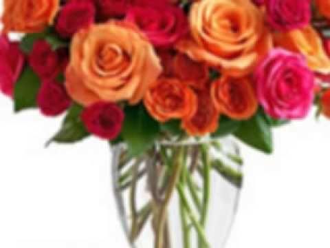 http://www.flowerwyz.com/ flower delivery,flower,flowers online,send flowers,flowers delivery,cheap flowers,cheap flower delivery,online flowers,sending flowers,send flowers online,flowers delivered,online flower delivery,send flowers cheap,
