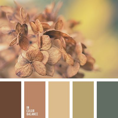 Calm, balanced palette of warm, bright colors. Pastel colors have a special comfort and harmony. They are filled with an atmosphere of comfort, relaxation, confidence. Browns very nature combined with the green range. Light colors expand the space, so they are easily applied to the interiors of small rooms.