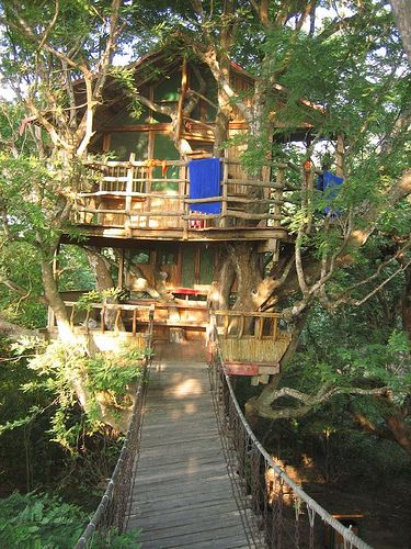 A two story treehouse