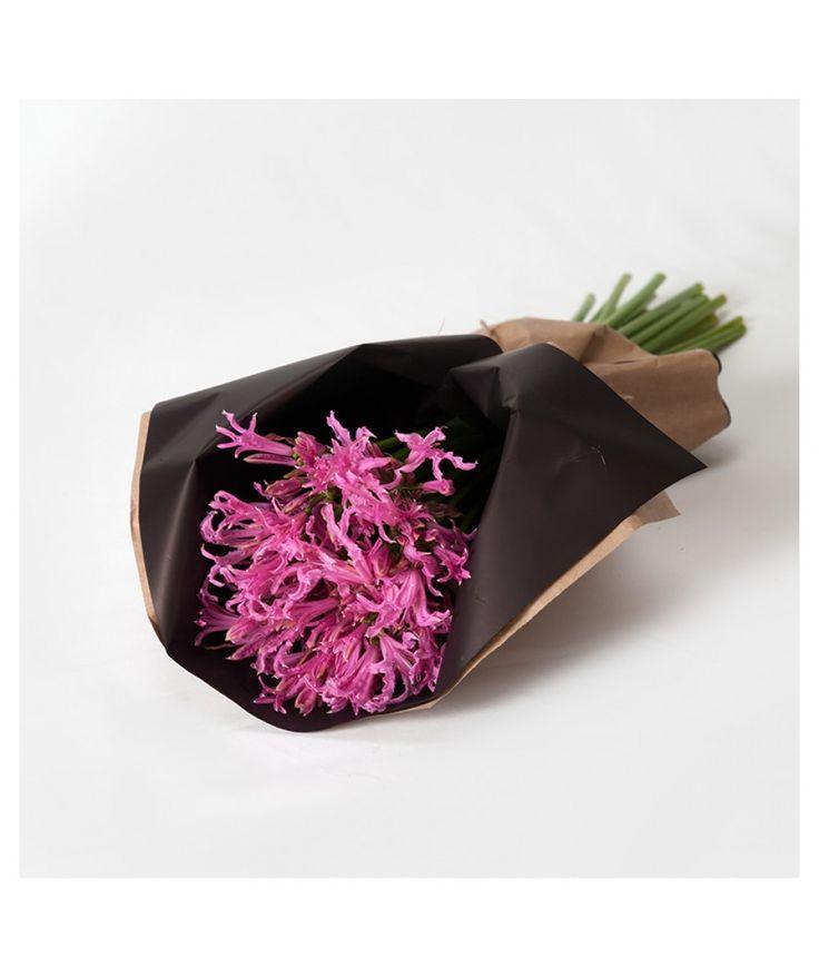Favourite Colour Wrap - Subscription Wraps - Nerines