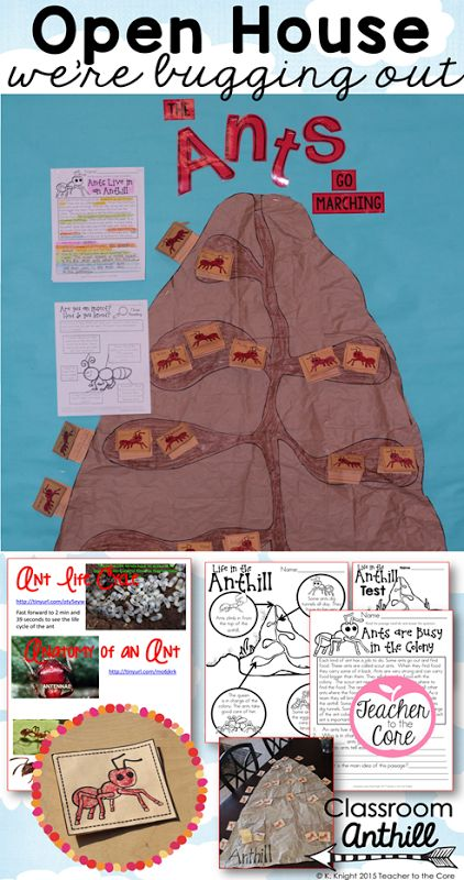 Ant Hill Bulletin Board and Literacy Activities