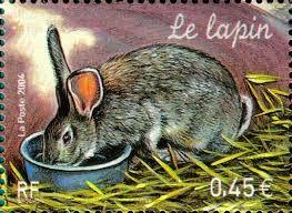 Recette n°3750: (Hongrie) Lapin au paprika | Mémoire de marmite
