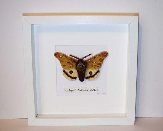Walter van Saturnia Moth. Ingelijste textiel kunst soft sculpture. Faux…