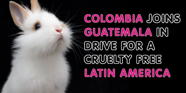 Cruelty Free Colombia? Something to do, In cosmetics