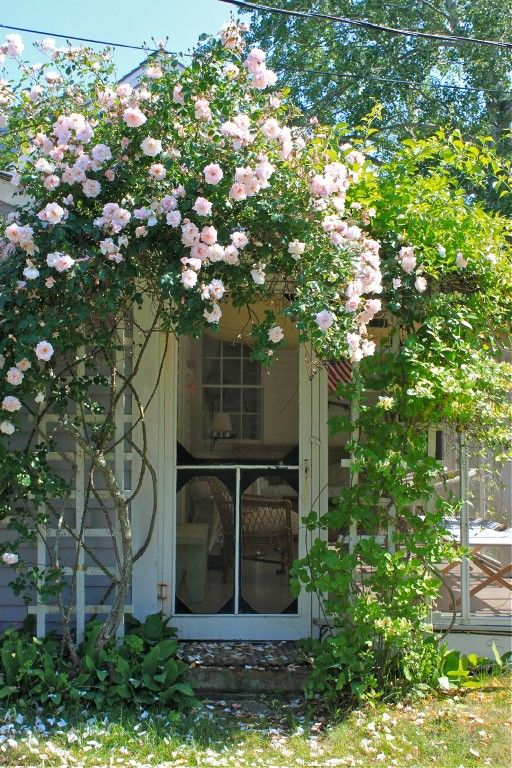 How Beautiful - Antique, Rose Covered Cottage. I wish it were mine. www.prosperityvault.com
