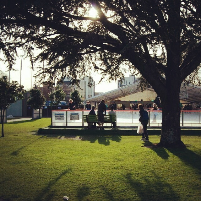 The Square (Palmerston North, New Zealand) #Photography