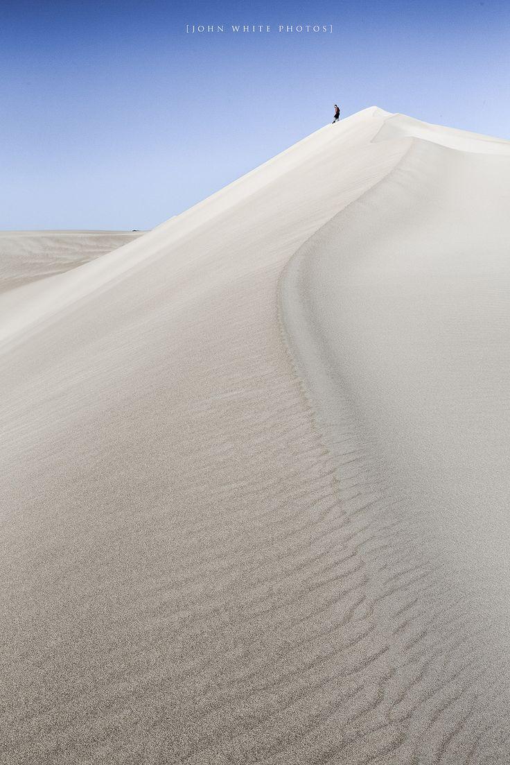 Sand Dune, Eyre Peninsula South Australia