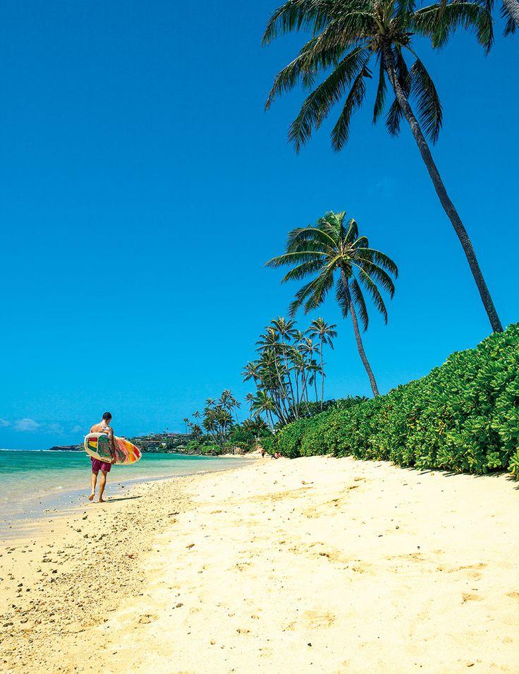 """せっかくなら、ガイドブックに載っていないディープでローカルないまのハワイを楽しみたいと思いませんか?編集部の高田におまかせください。特別ルートで見つけた3人の事情通のローカル・クリエイターとともに、ツーリスティックではない普段着のハワイを、それぞれの視点から紹介してもらいます。合言葉は、""""Don't Be a Tourist. Be a Traveler!""""(観光客になるな、旅人になれ!)です。"""